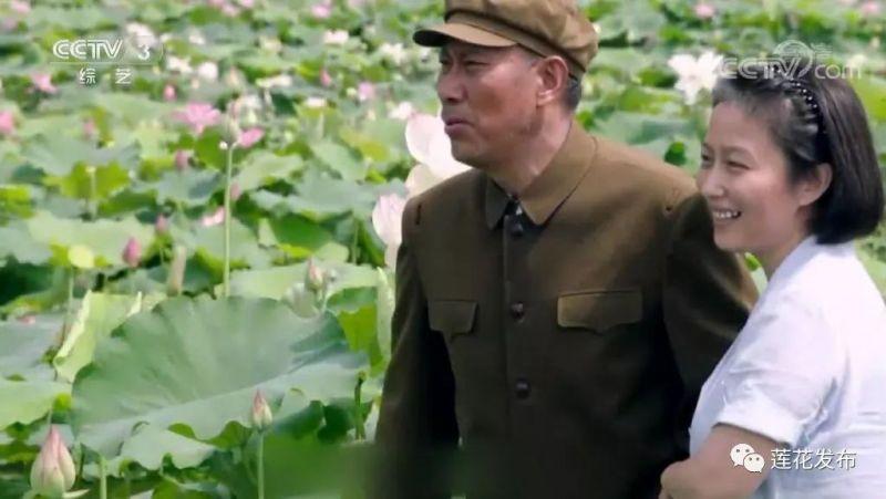▲2018年2月:《初心》在央视一套播出。