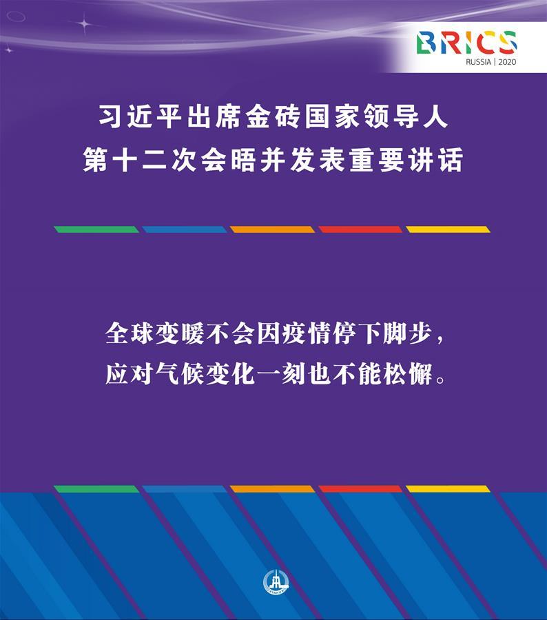 (图表·海报)[外事]习近平出席金砖国家领导人第十二次会晤并发表重要讲话(10)
