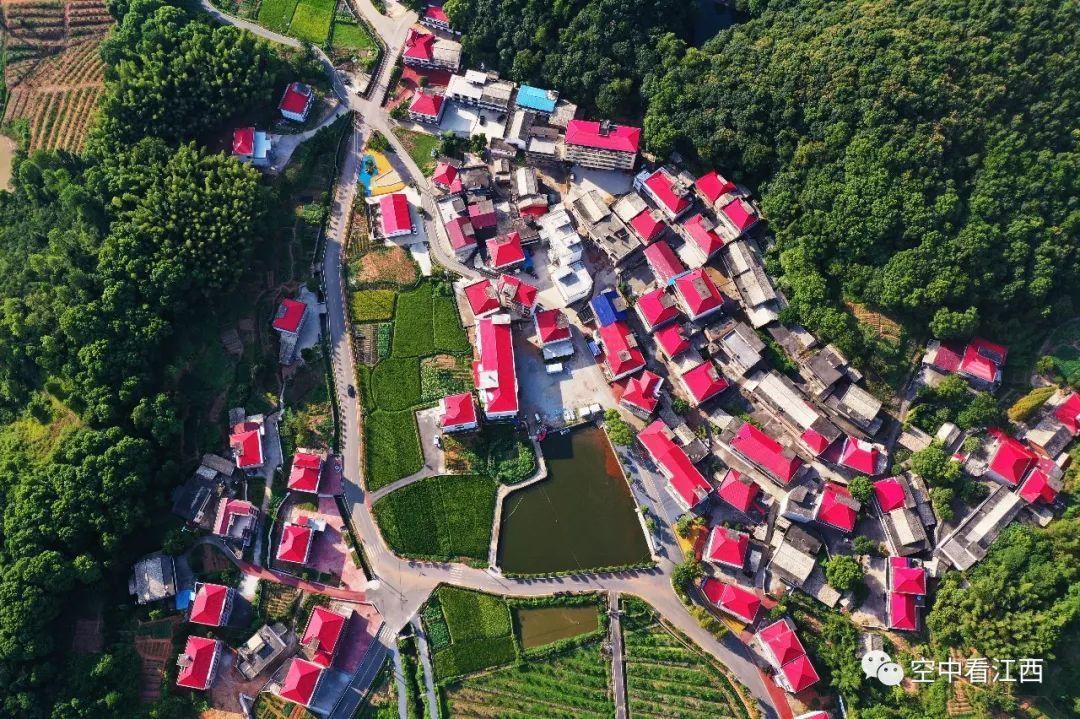 |【瞰见小康】航拍江西芦溪县秀美乡村:红顶楼房 错落有致 | 空中看江西