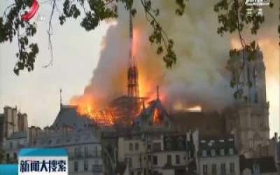 """法媒称巴黎圣母院大火中存在""""人为错误"""""""