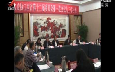 省政协委员分组审议常委会工作报告和提案工作情况报告