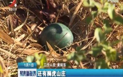 云南:元旦寻蛋!这家野生动物园真会玩