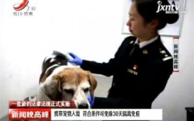 【一批新的法律法规正式实施】携带宠物入境 符合条件可免除30天隔离免疫