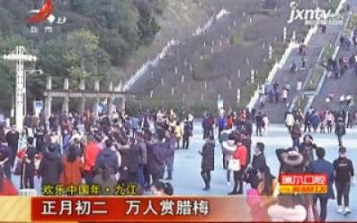 【欢乐中国年·九江】正月初二 万人赏腊梅