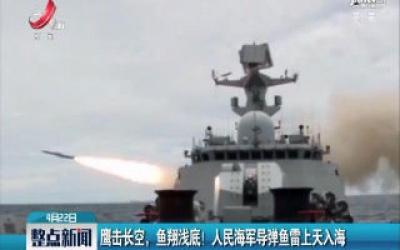 鹰击长空,鱼翔浅底!人民海军导弹鱼雷上天入海