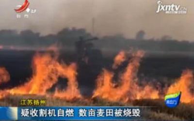 江苏扬州:疑收割机自燃 数亩麦田被烧毁