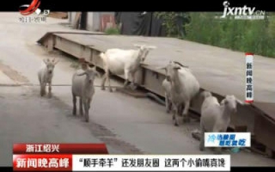"""浙江绍兴:""""顺手牵羊""""还发朋友圈 这两个小偷嘴真馋"""
