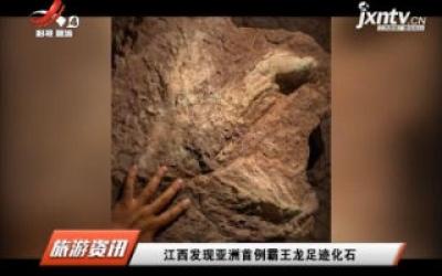 江西发现亚洲首例霸王龙足迹化石