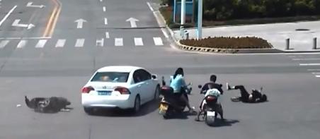 赣州龙南:骑车被撞飞 还得负全责