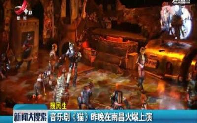 音乐剧《猫》8月9号晚在南昌火爆上演