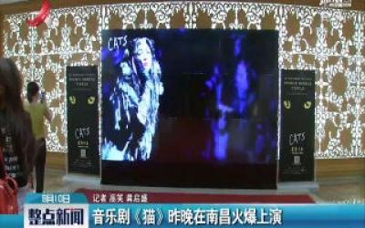 音乐剧《猫》8月9日晚在南昌火爆上演