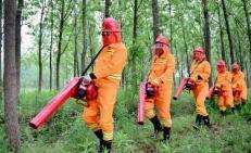 吉安市表彰森林防火责任目标考核先进单位