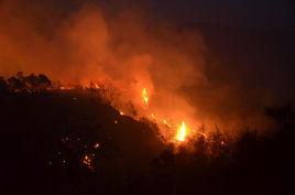 江西严禁在森林防火区野外用火 构成犯罪将追刑责