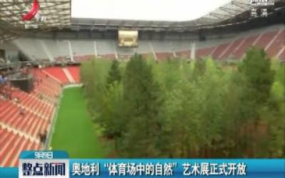 """奥地利""""体育场中的自然""""艺术展正式开放"""