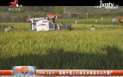 1046.3公斤! 袁隆平第三代杂交水稻首次公开测产