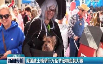 美国波士顿举行万圣节宠物变装大赛