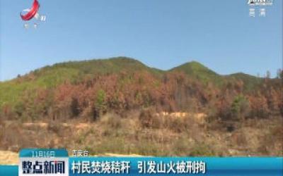 江西峡江:村民焚烧秸秆 引发山火被刑拘