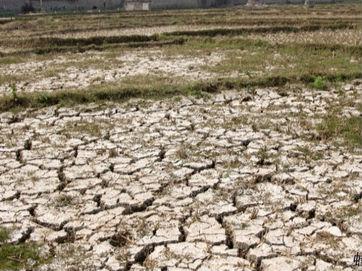 江西五河及鄱阳湖共39站出现历史新低水位
