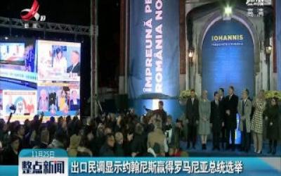 出口民调显示约翰尼斯赢得罗马尼亚总统选举
