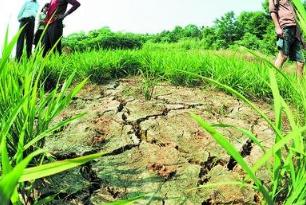 上饶市全力抗旱救灾保障群众生产生活用水