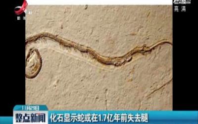 化石显示蛇或在1.7亿年前失去腿