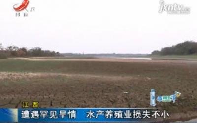 江西:遭遇罕见旱情 水产养殖业损失不小