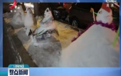 黑龙江哈尔滨:童心未泯!大妈将路边雪堆个动物园