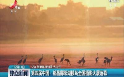 第四届中国·都昌鄱阳湖候鸟全国摄影大展落幕