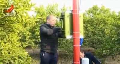 新余市建成桔园小气候实景观测站
