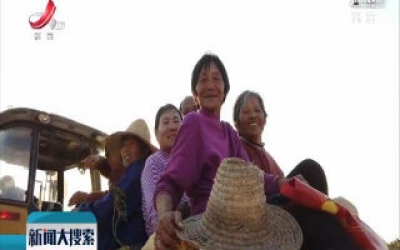 余江区洪桥村:熊革进卖红薯 为贫困户增收