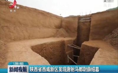 陕西省西咸新区发现唐驸马都尉薛绍墓