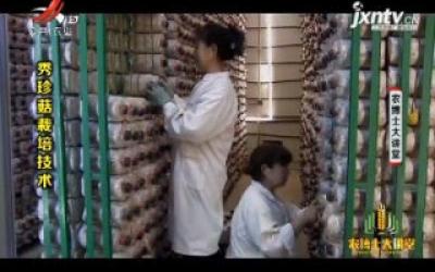 农博士大讲堂20200121 秀珍菇栽培技术