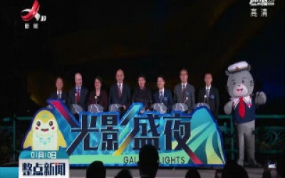 """香港海洋公园推出夜间娱乐活动""""光影盛夜"""""""
