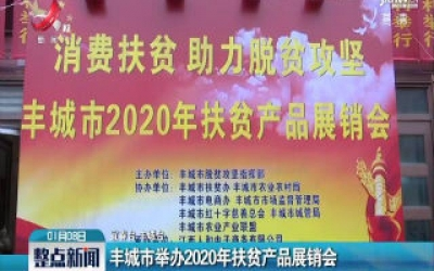 丰城市举办2020年扶贫产品展销会