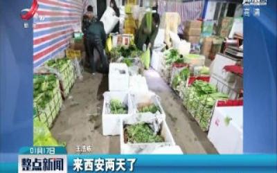 陕西西安·寒假里:他凌晨起床帮父母卖菜