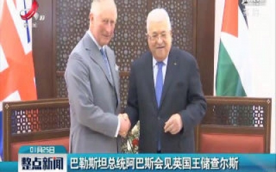 巴勒斯坦总统阿巴斯会见英国王储查尔斯