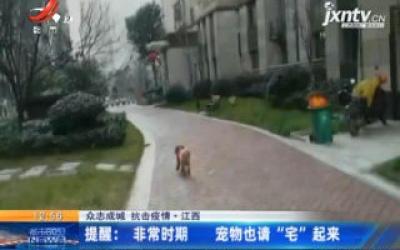 """【众志成城 抗击疫情】江西·提醒:非常时期 宠物也请""""宅""""起来"""
