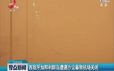 西班牙加那利群岛遭遇沙尘暴致机场关闭
