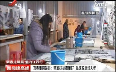 【新春走基层·魅力江西行】宜春市铜鼓县:精准扶贫措施好 提速脱贫过大年