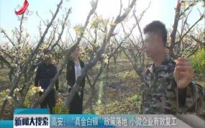【搜民生】丰城:产业基地复工 吸纳贫困户就业