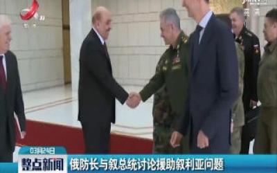 俄防长与叙总统讨论援助叙利亚问题