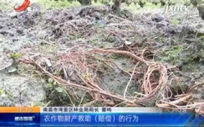 南昌湾里:野生动物致害商业险政府买单 全省县区头一份!