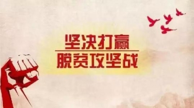 """李小豹:攻克剩余""""贫困堡垒"""" 如期实现高质量脱贫"""