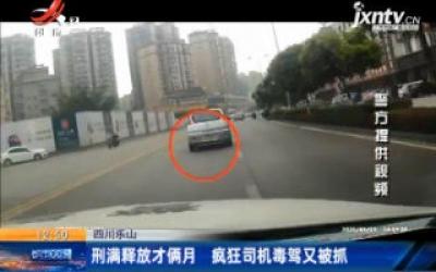 四川乐山:刑满释放才俩月 疯狂司机毒驾又被抓