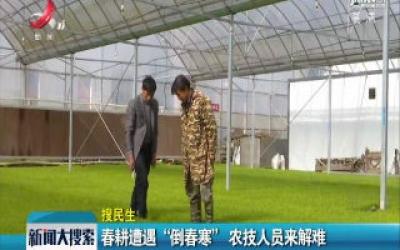 """【搜民生】春耕遭遇""""倒春寒"""" 农技人员来解难"""