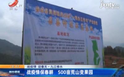 【战疫情 迎春天】九江修水:战疫情保春耕 500亩荒山变果园
