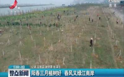 彭泽:阳春三月植树好 春风又绿江南岸