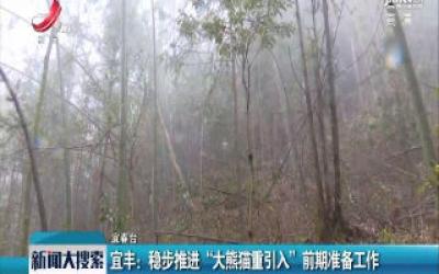 """宜丰:稳步推进""""大熊猫重引入""""前期准备工作"""
