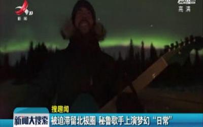"""【搜趣闻】被迫滞留北极圈 秘鲁歌手上演梦幻 """"日常"""""""