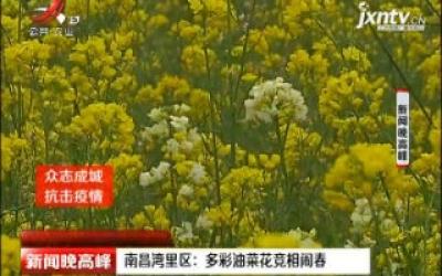 【众志成城 抗击疫情】南昌湾里区:多彩油菜花竞相闹春